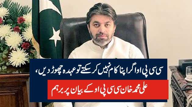 سی سی پی او اگر اپنا کام نہیں کرسکتے تو عہدہ چھوڑ دیں، علی محمد خان سی سی پی اوکے بیان پر برہم