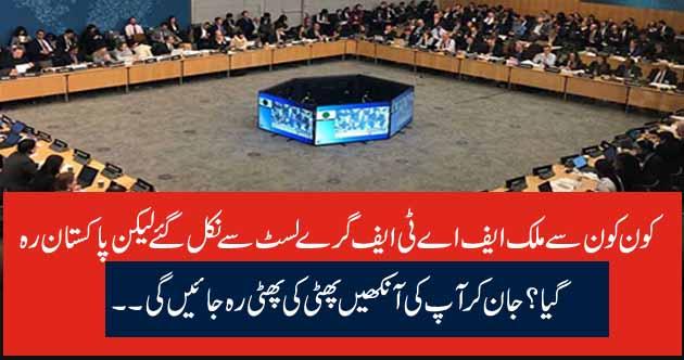 کون کون سے ملک ایف اے ٹی ایف گرے لسٹ سے نکل گئے لیکن پاکستان رہ گیا؟ جان کر آپ کی آنکھیں پھٹی کی پھٹی رہ جائیں گی