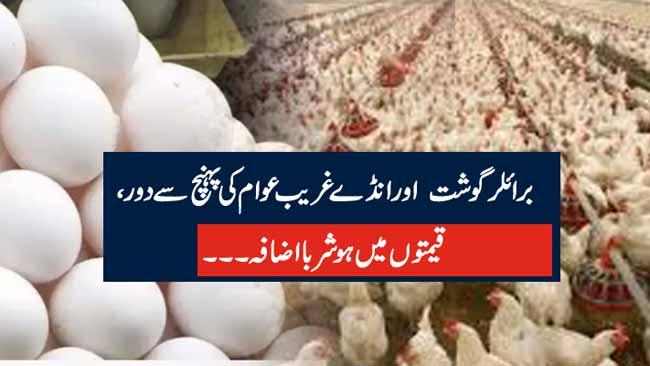 برائلر گوشت  اور انڈے غریب عوام کی پہنچ سے دور ، قیمتوں میں ہوشربا اضافہ