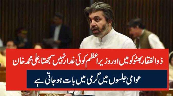 ذوالفقار بھٹو کو میں اور وزیراعظم کوئی غدار نہیں سمجھتا، علی محمد خان عوامی جلسوں میں گرمی میں بات ہوجاتی ہے